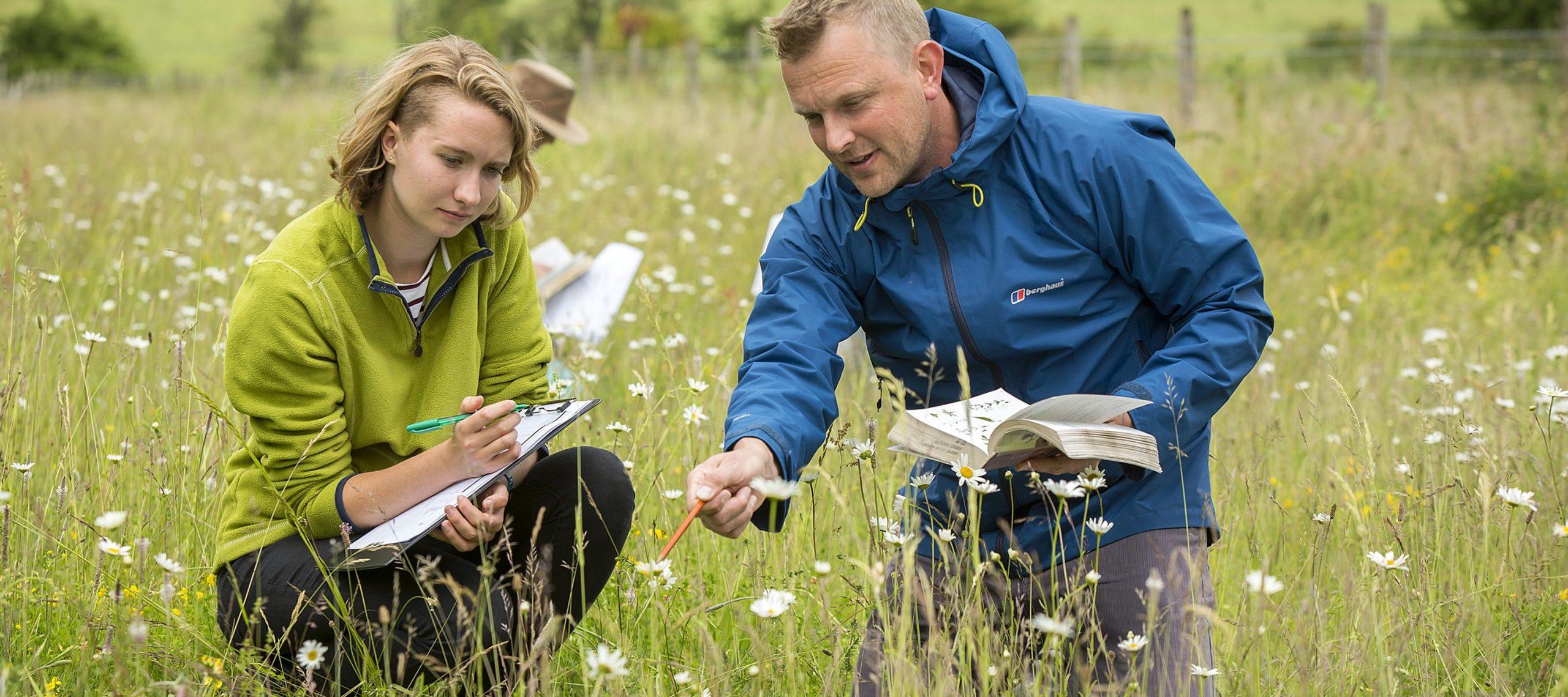 Conversation courses at Sparsholt College